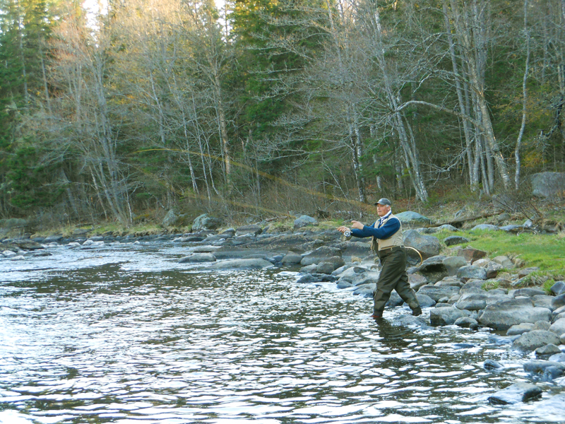 Dreaming of fly fishing in rangeley for Maine out of state fishing license